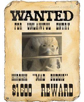 wantedposter5.jpg