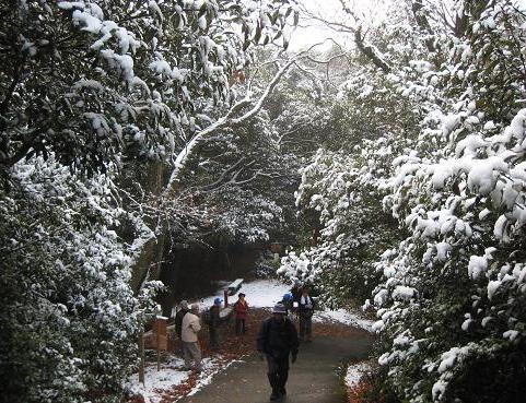 金華山登山道 020