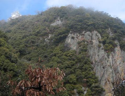 金華山南斜面 036