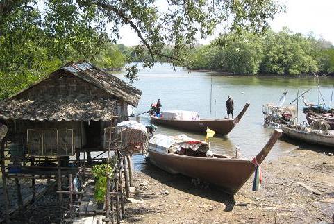 漁村 135