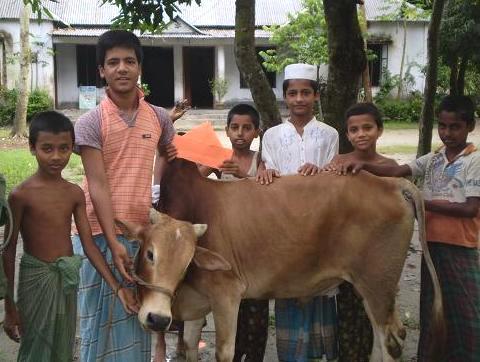 家畜の牛と 093