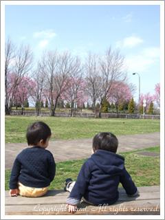 20100323_a1.jpg