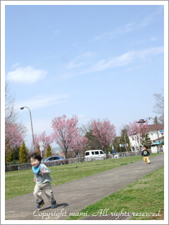 20100323_a2.jpg