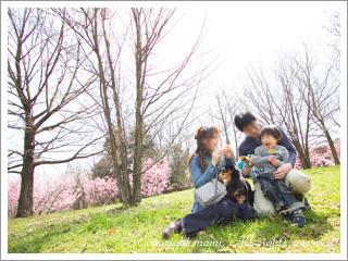 20100331_a5.jpg