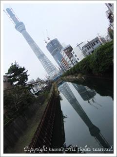 20101114_a3.jpg