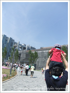 20110817_a1.jpg