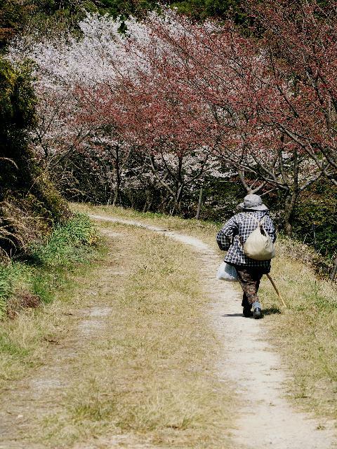 2009年04月09日_PICT0183