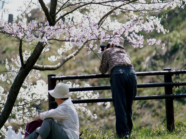 2009年04月09日_PICT0175