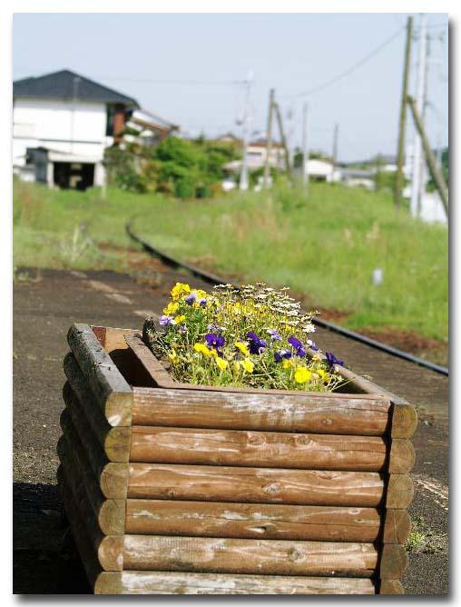2009年05月09日_PICT0047