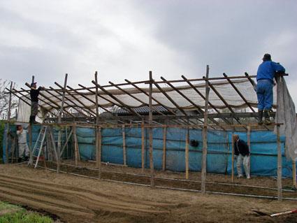 第五農園テント