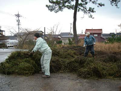 堆肥化一時置き場