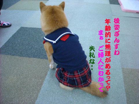 恋梅セーラー