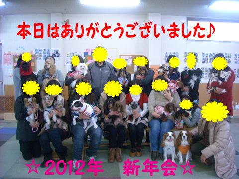 2012新年会