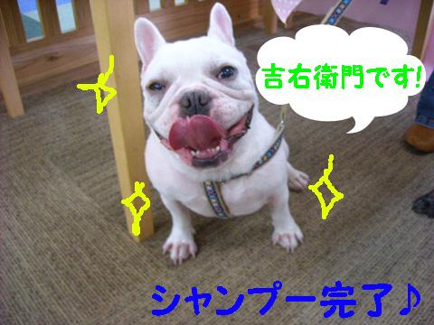 DSCN8019_20111015190543.jpg