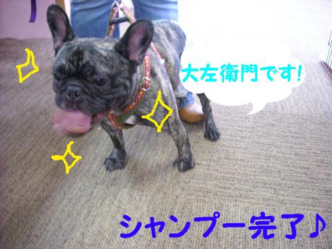 DSCN8021_20111015190542.jpg