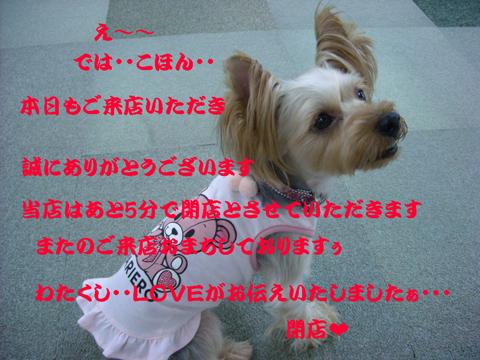 love_20100912004450.jpg