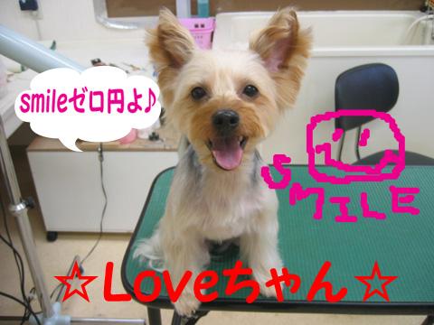 love_20120123134302.jpg