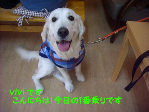 vivi_20120128224603.jpg
