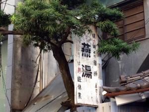 Tsubame-Yu_0908-6.jpg
