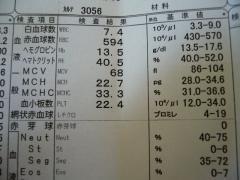 P1140434.jpg