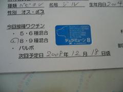 P1140584.jpg