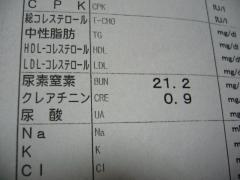 P1140633.jpg