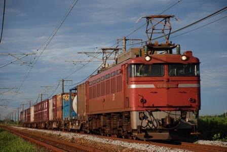 EF81146.jpg