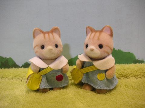 双子シマネコ1