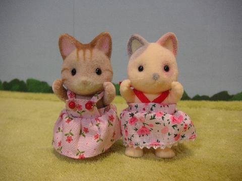 双子シマネコ8