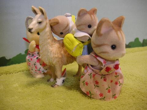 双子シマネコ92