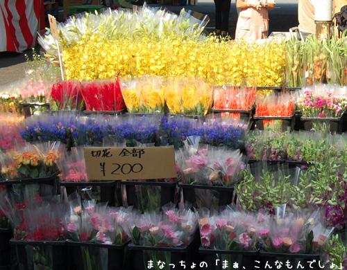 市場祭り2008-5