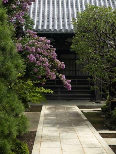 さるすべりの寺