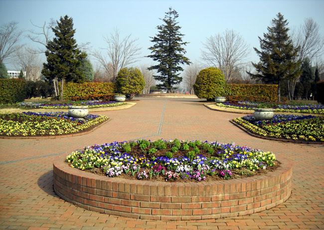 栃木わんぱく公園