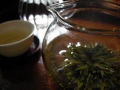 黄山緑牡丹