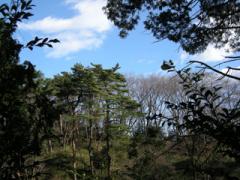 11.高幡の山