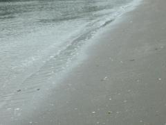 2.引く波