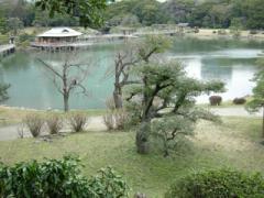 9.潮入の池