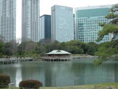15.潮入の池とビル