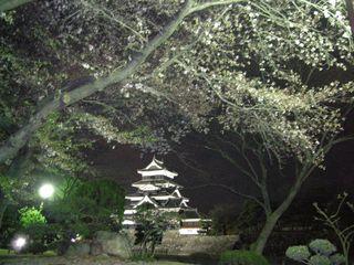 12.松本城と桜