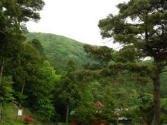 10.弔いの山