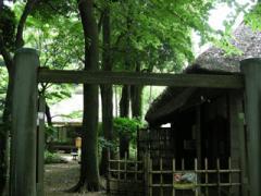 20.蘆花の家