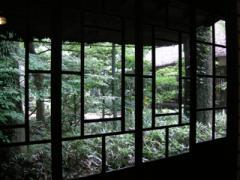 23.庭の景色