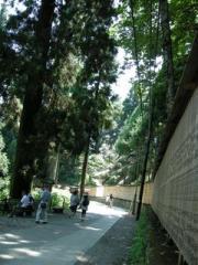 24.杉の奉納