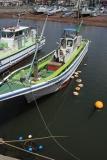 IMG_8665船