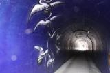 IMG_6485トンネル