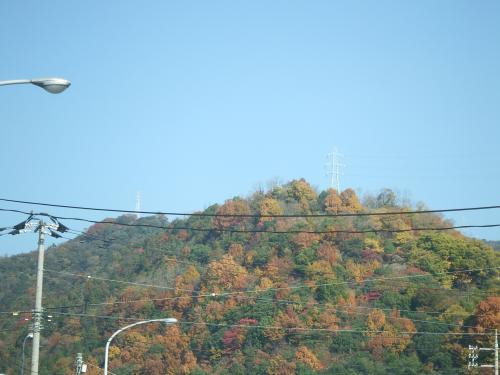 紅葉~近所の山