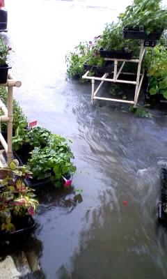 大雨の日の職場