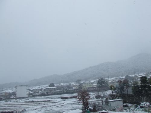 雪景色・・・・ほんまにどこや~~~