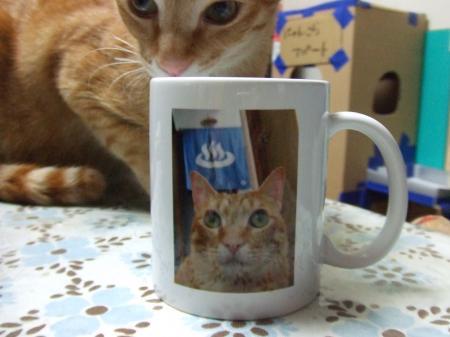 茶とらん温泉マグ