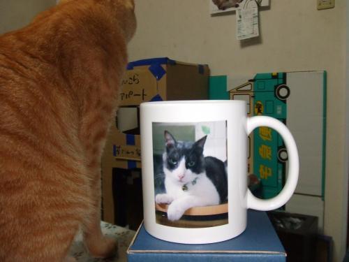 男辰之助マグカップ